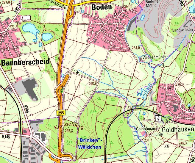 Brinken-Wald